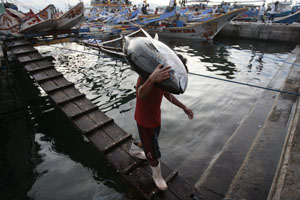 A warrant has been issued for suspects in General Santos City, whose port is seen here. (Darren Whiteside/Reuters)