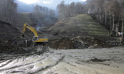 Construction for the Olympic Games has led to the destruction of forests in Sochi. (Reuters/Gennady Fyodorov)