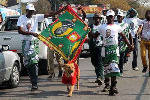 Supporters of President Edgar Lungu's party celebrate his re-election in August. The country's press has been harassed during Zambia's election year. (AFP/Dawood Salim)