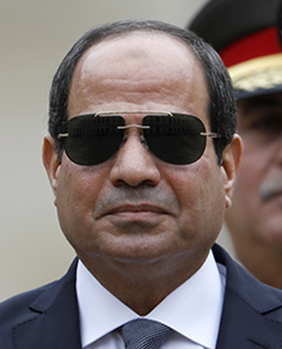 Egypt's President Abdel Fattah el-Sisi. (AFP/Pool)