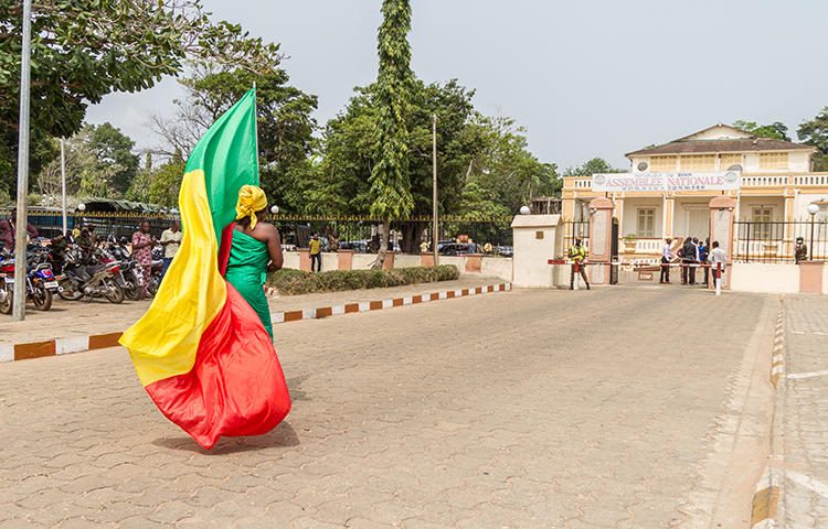 A demonstrator carries Benin's flag outside the National Assembly in Porto Novo in April 2017. Benin's media regulator threatened to shut down online publications that were distributing content without a license, according to news reports. (Yanick Folly/AFP)