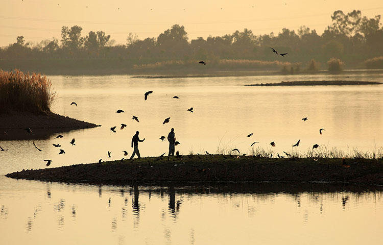 Men feed crows near a lake in Islamabad, Pakistan, on March 5, 2018. An anti-terrorism court in the northern Gilgit-Baltistan region on March 30, 2018, sentenced journalist Shabbir Siham in absentia on charges including defamation and committing acts of terrorism. (Reuters/Faisal Mahmood)