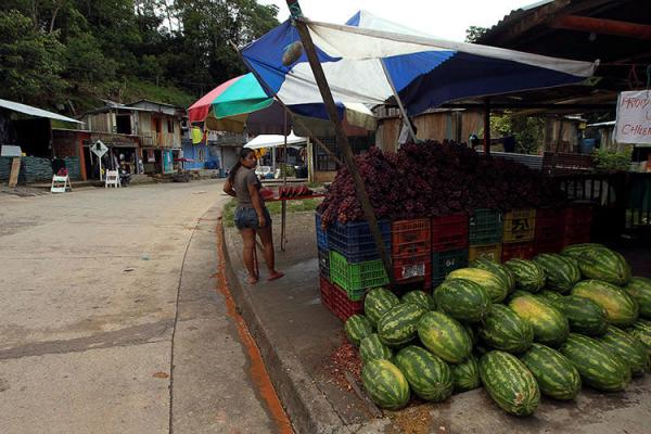 Un vendedor de frutas en Putumayo, Colombia, el 9 de octubre de 2016. Periodistas colombianos recibieron una serie de amenazas en un período de 72 que comenzó el 14 de julio. (Reuters/Guillermo Granja)