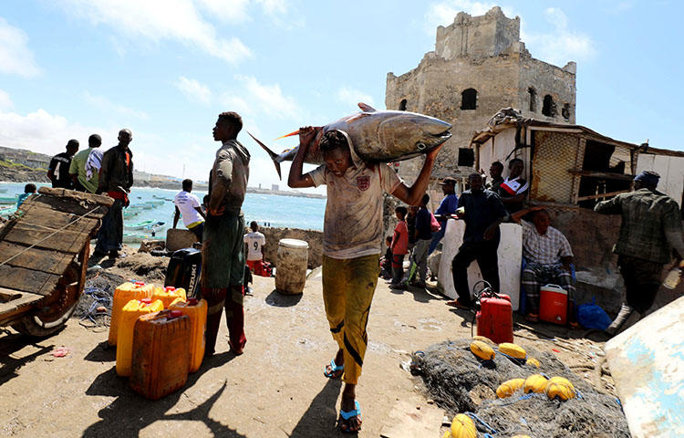 A fisherman carries his catch near a fishing port in Mogadishu on September 14. Authorities in the Somali state of Galmudug have detained a journalist on false news allegations. (Reuters/Feisal Omar)